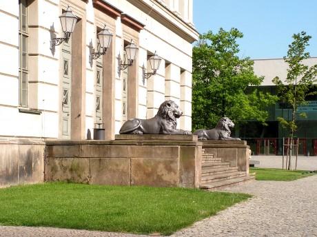 [lang_de]Löwen vorm Löwengebäude[/lang_de][lang_en]Lions in front of the Lionsbuiling[/lang_en]