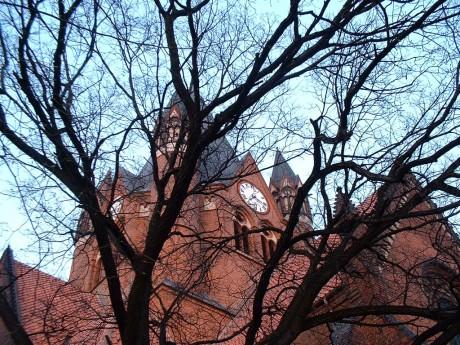 Blick durch eine Baum zum Turm der Pauluskirche